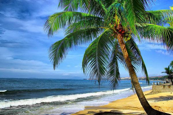 Phan Thiết - Mũi Né Biển Xanh Vẫy Gọi 2N1Đ ( Thứ 7 hàng tuần)